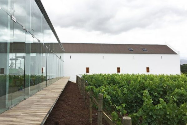 12.BabWine_TV3_In the Vines_Courtesy TV3 Architects and Town Planners