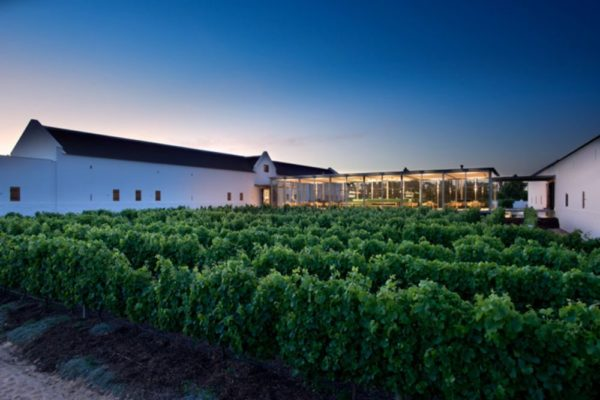 2.BabWine_TV3_Tasting room at sunset_Courtesy Babylonstoren